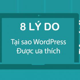 WordPress không chỉ là điểm đến của các doanh nghiệp Startup